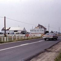 Photo de l'entrée du site, dans un champ au bord d'une route, avec des panneaux sur lesquels sont inscrits « Entrée Woodstock Pop Festival ».