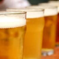 Des bières sur un bar