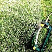 Une pelouse arrosée