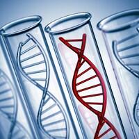 La vigilance est de mise quant aux tests d'ADN vendus sur Internet.