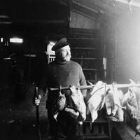 Dans un navire, le capitaine Joseph-Elzéar Bernier regarde vers l'extérieur. Devant lui, des volailles sont suspendues sur une broche.