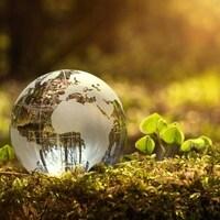 Un globe transparent sur un gazon.