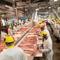 Des travailleurs font de la découpe dans un abattoir de porcs de l'Alberta.