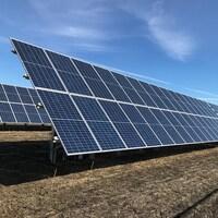 Des panneaux solaires installés sur le sol en Saskatchewan.