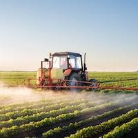 Un tracteur avec à l'arrière des tuyaux déverse un produit dans un champ.