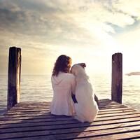 Une femme et un chien de dos, assis côte à côte.