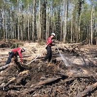 Des pompiers de la Société de protection des forêts contre le feu combattent un incendie.