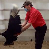 Un homme tenant un énorme oiseau aux ailes déployées dans ses mains.
