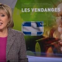 L'animatrice Pascale Nadeau présente un reportage sur les vendanges au Québec.