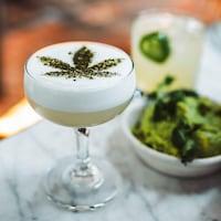 Présentation de plats représentant le cannabis comestible