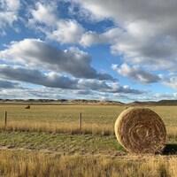 Une balle de foin en avant-plan d'un paysage agricole