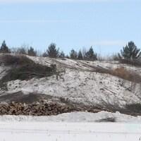 La pente déboisée avec des billots de bois au bas de la côte.