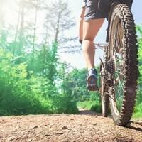 Vue arrière d'une personne sur un vélo de montagne sur une piste en forêt.