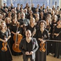 Une vue panoramique de l'orchestre.