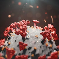 Le virus de la COVID-19.