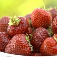 Un bol de fraises
