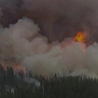 Plusieurs feux de forêt font rage dans le Nord du Québec