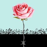 Une rose dont la tige est faite de fil de fer barbelé.
