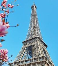 Vue de la rue de la Tour Eiffel sous un ciel bleu.