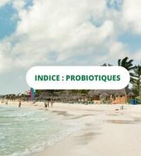 Un montage photo avec une plage des Caraibes et l'indice du concours qui est le mot : probiotiques.