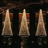 De nombreuses lumières blanches forment des sapins de Noël devant une vitrine de commerce.