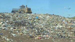 Les sacs de plastique d'Halifax pourraient être jetés dans les sites d'enfouissement
