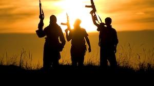 Le cas complexe des combattants canadiens du djihad