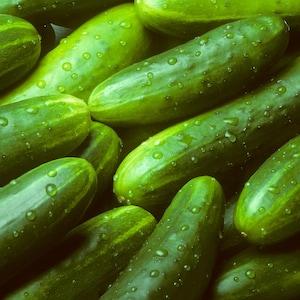 Des concombres entiers et verts avec leur pelure.