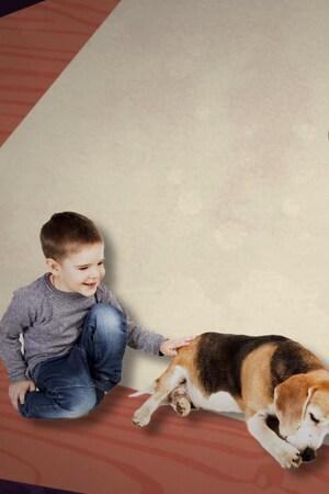 Une merveille surveille son chien et son fils.
