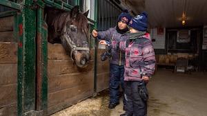 Les petits caressent la crinière du beau cheval noir