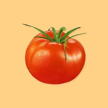 Une tomate rouge entière.