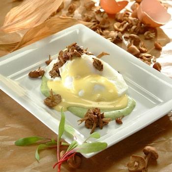 Une assiette avec deux œufs pochés et sauce hollandaise sur une purée d'orties.