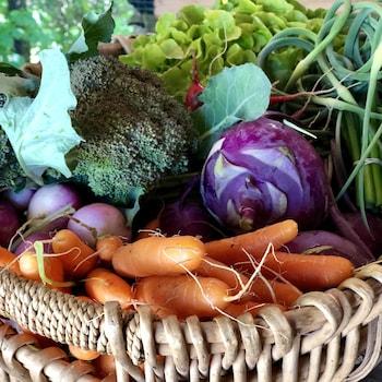 Une panier rempli de légumes colorés.