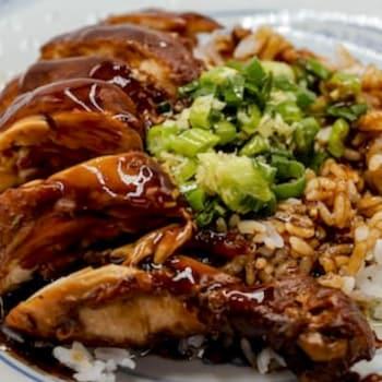 Une assiette avec un morceau de poulet et du riz.