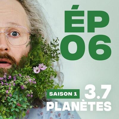 Présentation de l'épisode 06 de la saison 1 de 3.7 Planètes, avec François Bellefeuille, avec une barbe de feuilles et de fleurs.