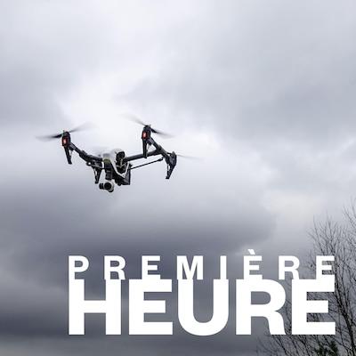 Un drone vole au-dessus de la forêt.