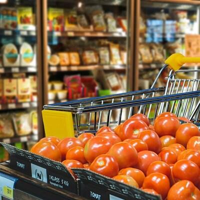 Au premier plan des tomates et au second plan les gros réfrigérateurs