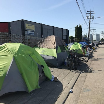Au premier plan, une tente verte fluo, suivie par de nombreuses autres.
