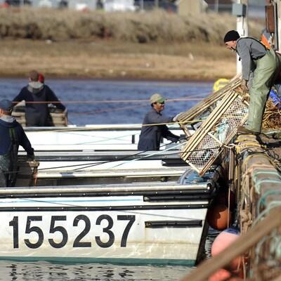 Des pêcheurs chargent des casiers à homard sur leurs bateaux, à Tignish.
