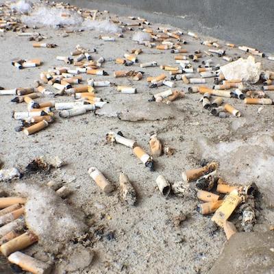 Plusieurs dizaines de mégots de cigarette au sol
