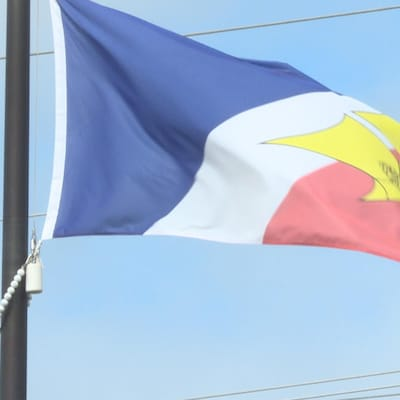 Le drapeau francophone de Terre-Neuve-et-Labrador.
