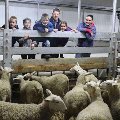 La famille pose dans la bergerie, à côte du troupeau de moutons.