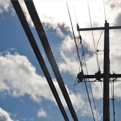 Des câble de fibre optique sur des poteaux électriques.