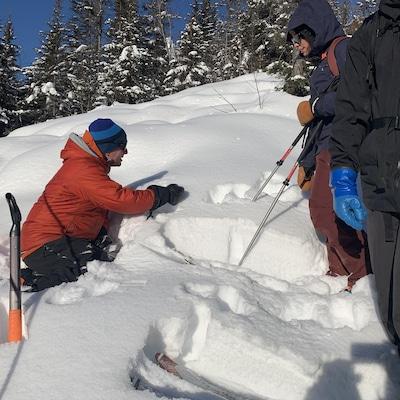 Des skieurs dans la neige