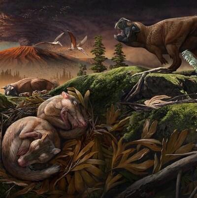 Illustration montrant l'habitat du Origolestes lii.