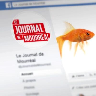La page Facebook du Journal de Mourréal.