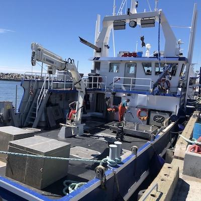 Pêcheurs de crabe au travail sur un bateau.