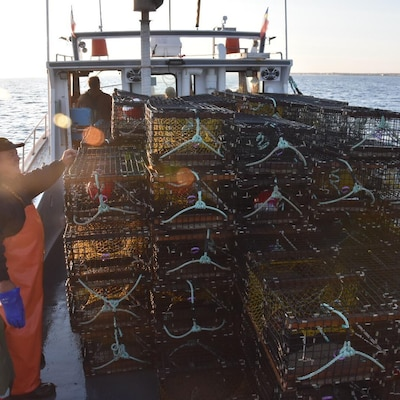 Des pêcheurs sur le pont de leur bateau sourire aux lèvres.