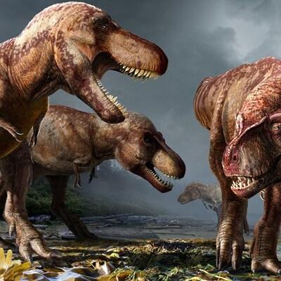 Illustration artistique montrant quatre T. rex dans leur environnement.
