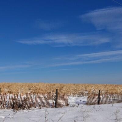 Des champs agricoles sous un ciel ensoleillé en hiver dans la région de Rivière-la-Paix, en Alberta.